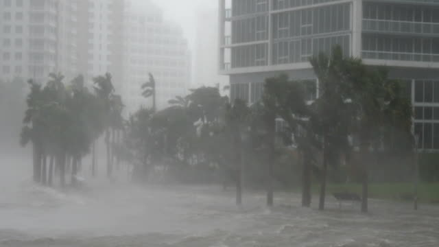hurricane irma 2017 slams the miami florida area with damaging winds and storm surge - storm surge stock videos & royalty-free footage