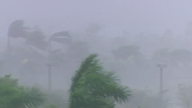 hurricane irma in full force in miami florida - hurricane stock videos and b-roll footage