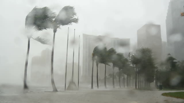 vidéos et rushes de hurricane irma slams florida - wind