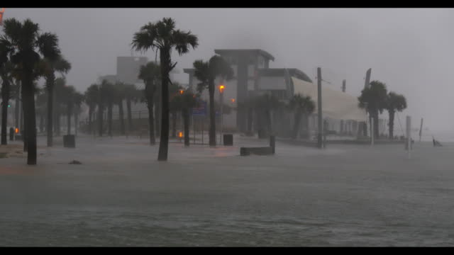 vidéos et rushes de hurricane sally strike the u.s state of alabama with strong winds and heavy rains on september 16, 2020. - gulf coast states
