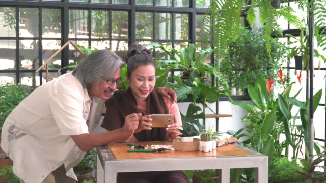 husband talking wife taking photos by smartphone with happiness about tropical tree,cactus in indoor garden of a greenhouse as hobbies, and small business. lifestyle of asian active senior couples with white hair after retirement as florist. - tropical tree stock videos & royalty-free footage