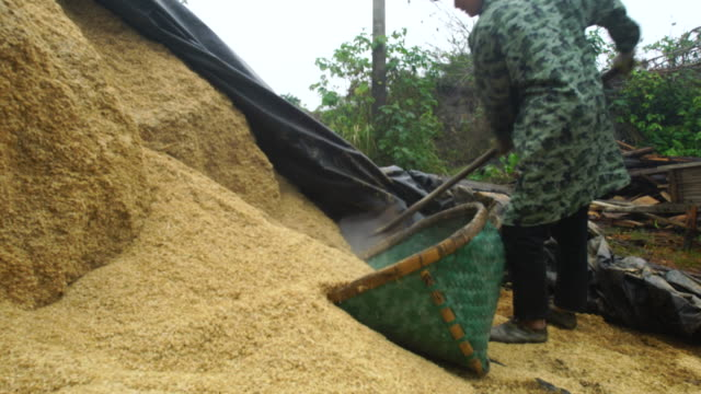 vidéos et rushes de husk of rice used in traditional brick kilns ready to be burned - brique