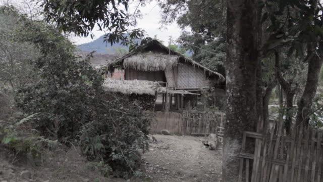 ws hut and jungle / xam neua, laos - tetto di paglia video stock e b–roll