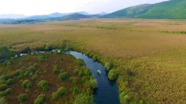 hutovo blato - nature park - panorama boat on the river - bosnia and hercegovina stock videos & royalty-free footage