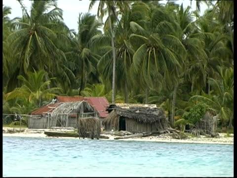huts and trees on the beach, zoom out, panama, central america - tetto di paglia video stock e b–roll