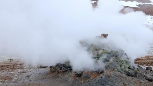 hverir the geothermal area lake myvatn, krafla  iceland - sulphur stock videos & royalty-free footage