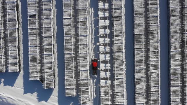hwangtaedeokjang (dried pollack farm) and a tractor in winter / daegwallyeong-myeon, pyeongchang-gun, gangwon-do, south korea - pollock fish stock videos & royalty-free footage