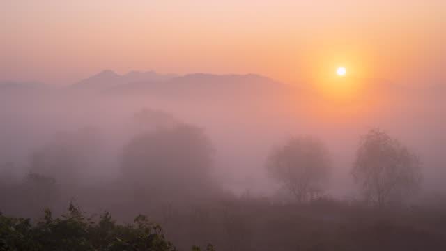 vidéos et rushes de hwapocheon stream in fog / gimhae-si, gyeongsangnam-do, south korea - orange