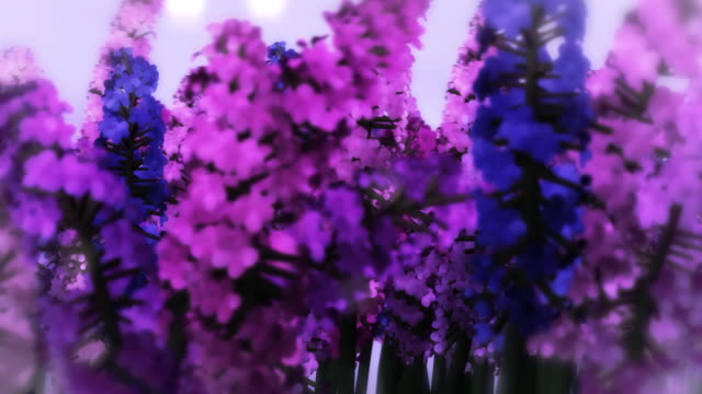hyacinths gently blowing in the  wind - hyacinth stock videos & royalty-free footage