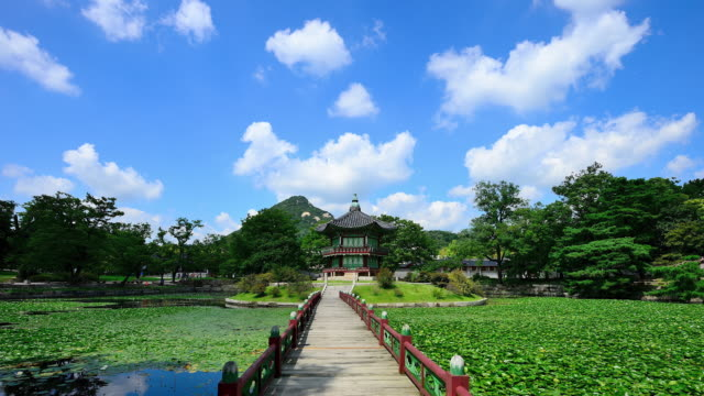 hyangwonjeong pavilion in gyeongbokgung palace in summer / jongno-gu, seoul, south korea - palace stock videos & royalty-free footage