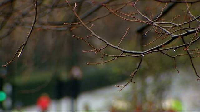 vídeos y material grabado en eventos de stock de general views of memorial england london hyde park ext general views of hyde park bombing memorial stone / queen's household cavalry mounted regiment... - cavalry