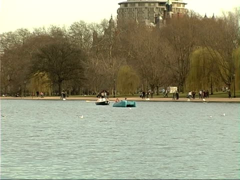 stockvideo's en b-roll-footage met hyde park general views rowing and pedalo boats on serpentine with seagulls flying over lake / closer shot of two people operating pedalo / greylag... - waterfiets