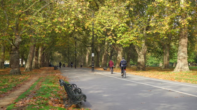 hyde park in autumn, london - hyde park london stock videos & royalty-free footage