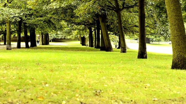 ロンドンのハイド ・ パーク - ロンドン ハイドパーク点の映像素材/bロール