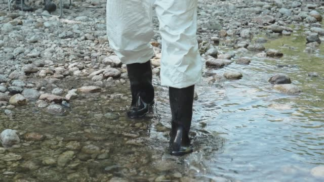 hydro biologists taking samples of water - medical test stock videos & royalty-free footage