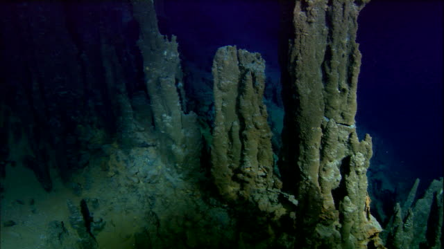 Hydrothermal deep sea vents rise from ocean floor, Mid Atlantic Ridge