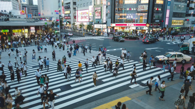 hyper time-lapse of shinjuku cross - zebra crossing stock videos & royalty-free footage