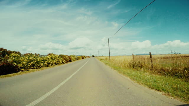 vídeos de stock e filmes b-roll de hyperlapse: driving a car in a straight summer road pov - car point of view