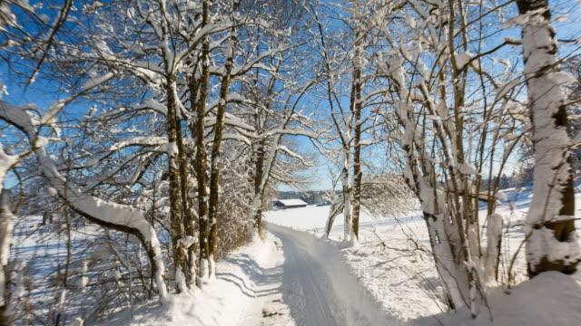 vidéos et rushes de hyperlapse: driving along a rural forest road covered in snow in winter - route à une voie