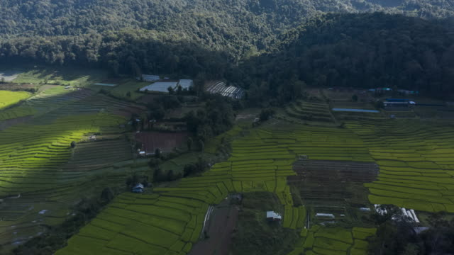 hyperlapse of rice terrace aerial view with cloudy sky - philippines stock videos & royalty-free footage