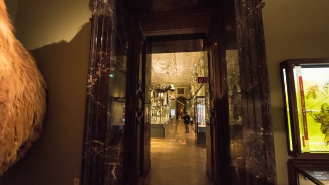 vidéos et rushes de hyperlapse timelapse of the interior of national history museum, vienna, austria, europe. - time-lapse - musée