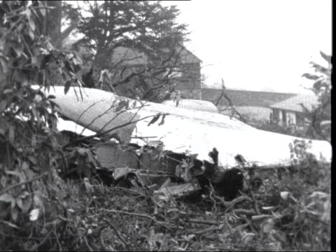 'Iberian' Caravelle crashes Dead sheep Sussex Fernhurst MS Wreckage in trees MS Side of plane 'Iberia' MS Plane door MS Police in woods MS Ditto TILT...