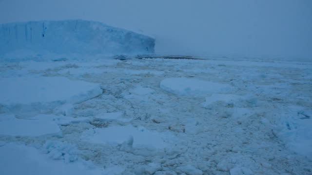 ws ice and iceberg in bad weather, antarctica - south pole stock videos and b-roll footage