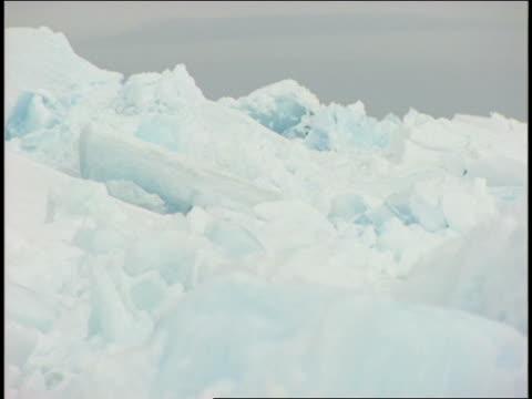 ice and snow create a stark landscape near the antarctic ocean. - antarctic ocean stock videos & royalty-free footage