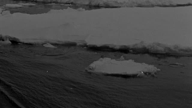 ice chunks drift on a sea during a richard e. byrd polar expedition. - black and white stock videos & royalty-free footage