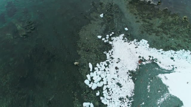 ice covered coast - antarctic peninsula stock videos & royalty-free footage