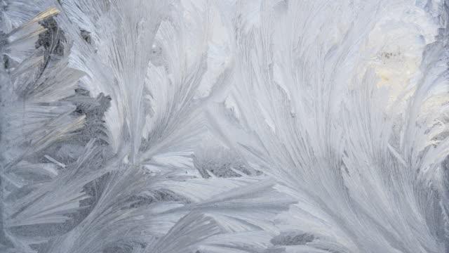 TL / Ice crystals melting on window