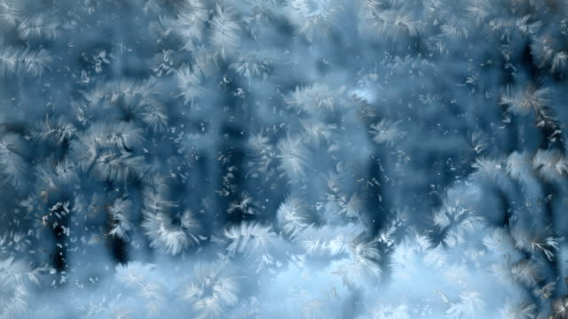 ice crystals - frost stock videos & royalty-free footage
