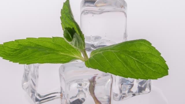 vídeos y material grabado en eventos de stock de cubo de hielo sobre fondo blanco - mint leaf culinary