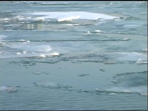 schwimmende eis auf dem fluss detroit - detroit river stock-videos und b-roll-filmmaterial