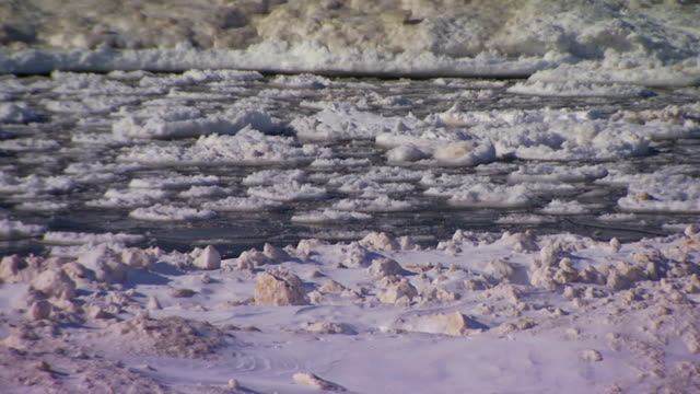 Ice floating on water near snowy shore