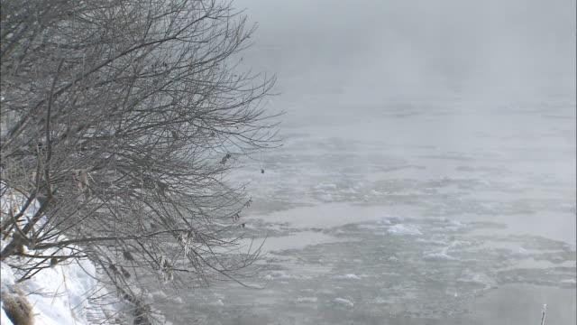 ice floats down steaming river, japan - asahikawa stock videos & royalty-free footage
