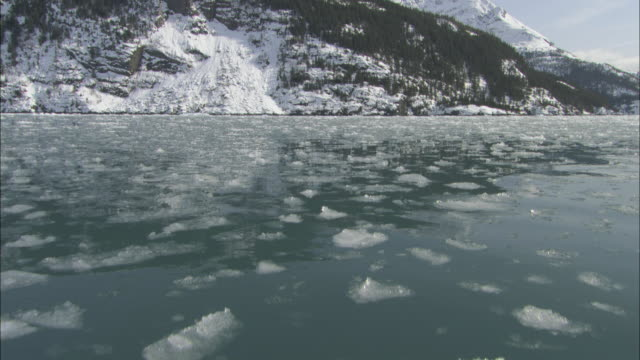ice floats in prince william sound. - prince william stock videos & royalty-free footage