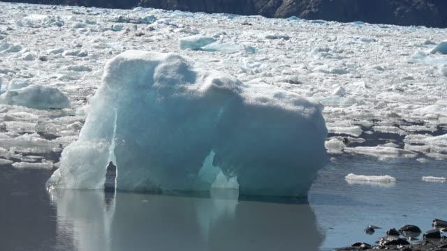 vidéos et rushes de ice floe floating on sea, waterfront of south alaska, united states - iceberg bloc de glace