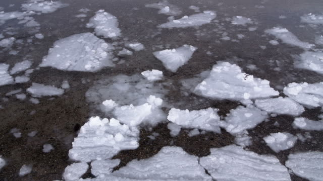 ice floe - ice sheet stock videos and b-roll footage