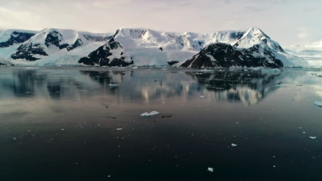 ice floes at harbor - antarctic peninsula stock videos & royalty-free footage