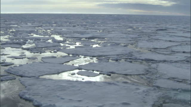 WS, Ice floes on sea, Russia