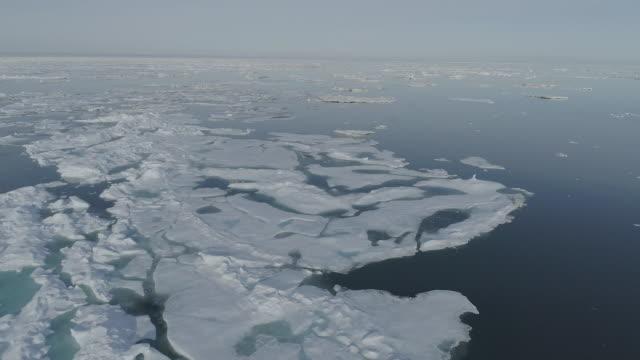 ice floes on the sea surface, kaktovik, alaska, united states - ice floe stock videos & royalty-free footage