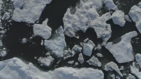 ice floes on the sea surface, kaktovik, alaska, united states - ハイチ点の映像素材/bロール