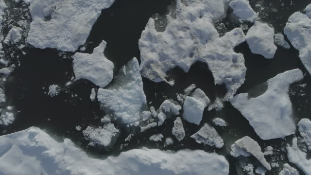ice floes on the sea surface, kaktovik, alaska, united states - 氷河点の映像素材/bロール
