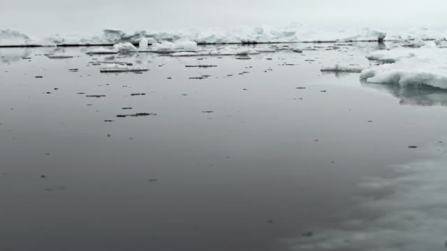 t/l ws ice floes on water / pond inlet, nunavut, canada - nu stock videos & royalty-free footage