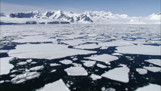 ice floes on water - clima polare video stock e b–roll