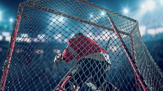 ice hockey goalie - professional sportsperson stock videos and b-roll footage
