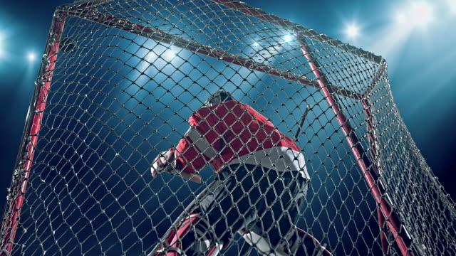 Torwart-Hockey-Spieler