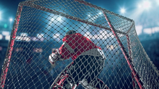 ice hockey goalie - winter sport stock videos and b-roll footage