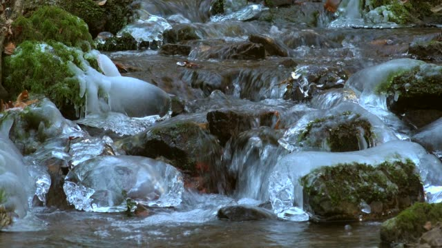 Ice sculptures at Wenichbach Brook in the natural forest Tabener Urwald (Taben Primeral Forest), Taben-Rodt, Rhineland-Palatinate, Germany, Europe